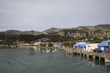 AKAROA SOUTH ISLAND NEW ZEALAND May Looking back towards this delightful historic town known as the French Settlement from a harbour cruise boat