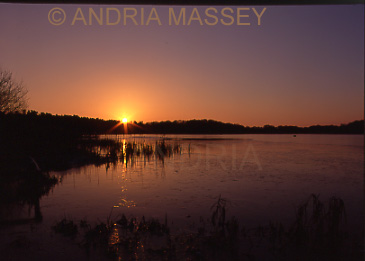 Frensham Surrey