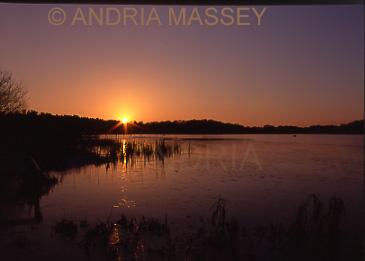 Frensham Surrey Sunset over the Great Pond