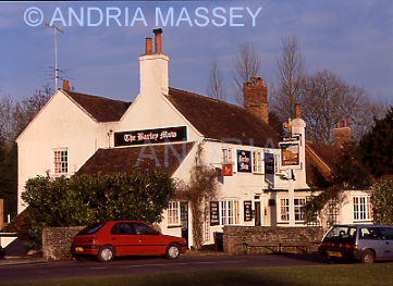 Tilford Surrey