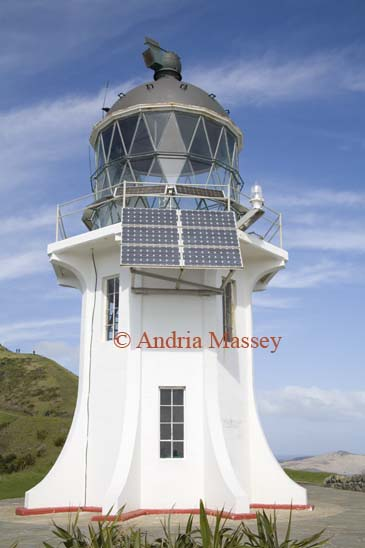 AUPORI PENINSULA NORTH ISLAND NEW ZEALAND May Cape Reinga lighthouse dramatically perched on a headland 165m above Colombia Bank was built in 1941