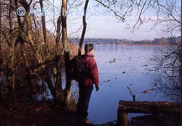 Frensham Surrey A walker looking across a frozen Little Pond