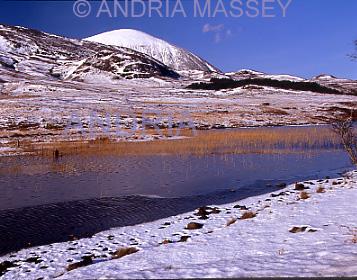 Isle of Skye Scottish Highlands Frozen reeds in Loch Cill Chriosd