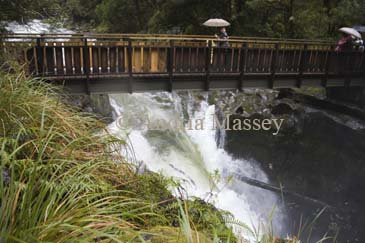 MILFORD SOUND FIORDLAND SOUTHERN LAKES SOUTH ISLAND NEW ZEALAND May Tourists on a bridge over The Chasm on the Cleddau River in Fiordland National Park
