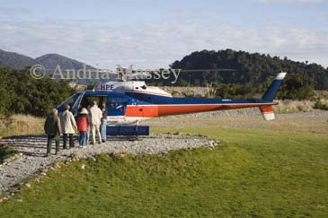 FRANZ JOSEF WEST COAST SOUTH ISLAND NEW ZEALAND May Passengers boarding a helicopter for a trip to land on the snow of Mount Cook