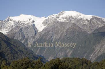 FRANZ JOSEF WEST COAST SOUTH ISLAND NEW ZEALAND May Looking up to Franz Josef Glacier in the  snow covered Southern Alps