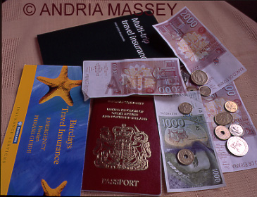 Passport, insurance policy and a selection of foreign currency