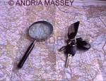 Magnifying glass and set of car keys on an ordnance survey map