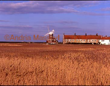 Cley North Norfolk - windmill from across the reeds