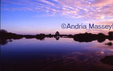 The New Forest Hampshire Sunset over a lake  Format: 35mm