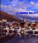 Husavik Harbour Iceland  Format: Medium