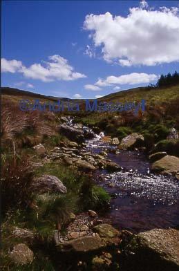 Nant-y-Moch River near Aberystwyth Dyfed  Format: 35mm